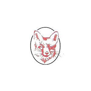 FoxValley 32/40 melkpoeder voor wilde dieren